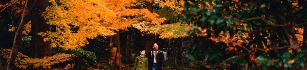 Keindahan Musim Gugur Di Jepang
