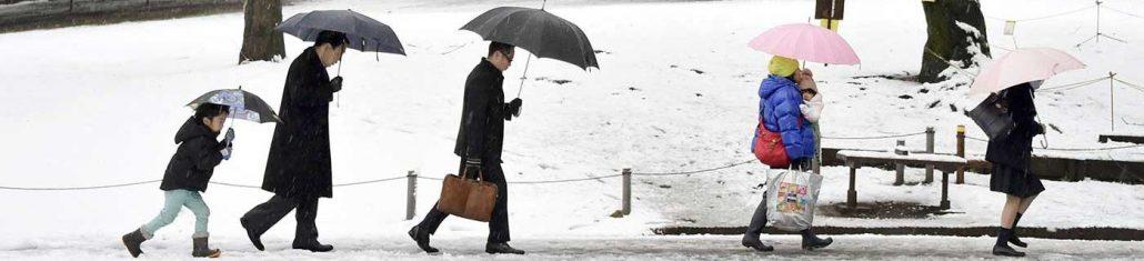 Waktu Yang Pas Untuk Liburan Ke Jepang